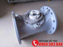 Đồng hồ nước Actaris D200, D250, D300, D350