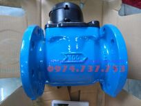 Đồng hồ nước Itron Woltex DN100