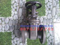 Van cổng Wonil DN65 - Hàn Quốc