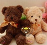 Teddy XJR dễ thương (25cm,40cm,55cm)