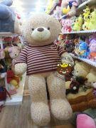 Gấu bông Teddy len sọc ngang đỏ 1m8