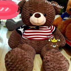 Gấu bông Teddy Texas (90cm, 1m2, 1m4, 1m8)