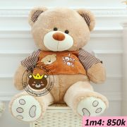 Gấu bông Teddy ao soc I love you (1m4)
