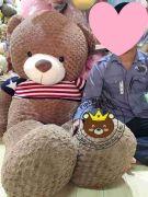 Gấu bông teddy khổng lồ Texas 1m8