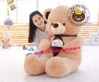 Gấu Teddy ôm kem (90cm, 1m2, 1m4)