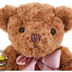 Teddy nơ Hugsbaby mắt có chữ (60cm)
