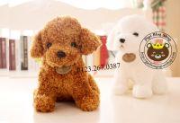 Chó bông lông xù tơ mịn (25cm, 35cm)