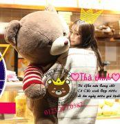 Gấu bông teddy lông mịn nâu socola áo len sọc đỏ (1m2, 1m5)