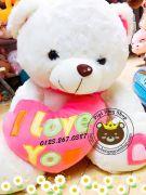 Gấu ôm tim I love you hồng (60cm, 80cm, 1m, 1m2)
