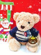 Gấu bông teddy áo len logo hải quân Hugsbaby (40cm, 50cm)