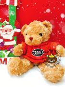 Gấu bông teddy áo len Audi cam (35cm)