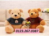 Gấu bông teddy áo len xe hơi (40cm , 60cm)