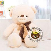 Gấu bông teddy Hana nơ nâu Love (1m2, 1m4)