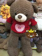 Gấu bông teddy socola áo len Love (1m4)