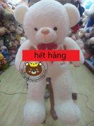Gấu bông Teddy lông cừu (1m4)