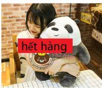 Gấu bông Panda lông 3d size 50cm (3 con gấu - Đơn giản tôi là Gấu)