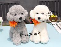 Chó bông Poodle bông cúc (35cm)