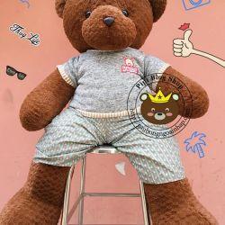 Gấu bông teddy pineapple áo quần thêu ABC socola (1m3, 1m5)