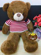 Gấu bông Teddy lông lạ dày chất 2 lông mới áo len đỏ  (1m2, 1m4)