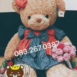 Gấu bông teddy váy đầm bi nâu (60cm, 80cm, 1m2, 1m4)