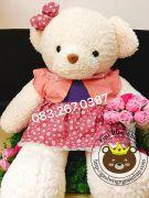 Gấu đầm váy hồng lông Thái (60cm, 80cm, 1m2, 1m4)
