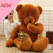 Gấu bông teddy Shy Bear (1m8)