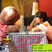 Gấu bông teddy Jack bear lông tơ nâu (80cm, 1m2, 1m4)
