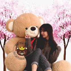 Gấu bông Teddy Kiss (1m7)