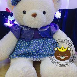 Gấu bông teddy váy đầm xanh lông Thái (60cm, 80cm, 1m2, 1m4)