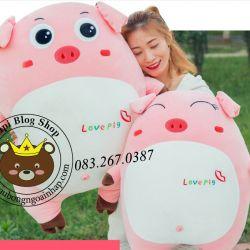 Heo bông hồng Love Pig (40cm, 60cm, 80cm ,1m)
