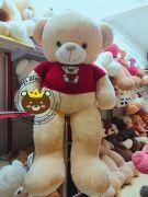 Gấu bông teddy nâu lông siêu mịn (1m5)