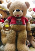 Gấu bông teddy Smile áo Nici (1m4)