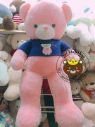 Gấu bông teddy hồng lông mịn áo Happy Everyday (1m5)