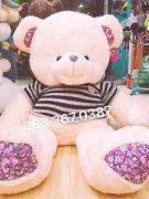 Gấu bông teddy áo len hoa liti (1m4)