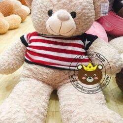 Gấu bông teddy áo len (1m2, 1m4)