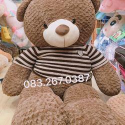 Gấu bông teddy khổng lồ Texas (90cm, 1m2, 1m4, 1m8)