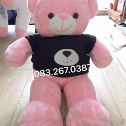 Gấu bông teddy hồng lông mịn áo len nâu (90cm)