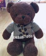 Gấu bông teddy baby socola áo khoác burbery (80cm)