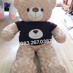 Gấu bông teddy áo len gấu nâu (90cm, 1m2, 1m4, 1m8)