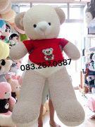 Gấu bông teddy lông Thái áo len đỏ (1m5)