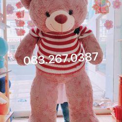 Gấu bông teddy hồng áo len cờ mỹ (1m4)