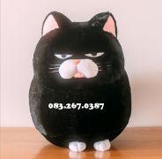 Mèo bông Amuse đen (40cm, 60cm)