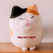Mèo bông Amuse tam thể (40cm, 60cm)