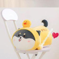 Chó Shiba Manto nằm cosplay nón vịt/ nón heo (50cm, 65cm)