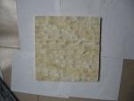 Gạch ốp lát hoa văn sáng MS09