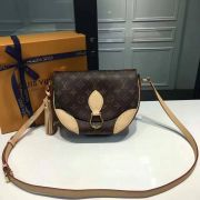 Túi Xách Louis Vuitton Monogram Canvas Saint Cloud-M41481-TXLV048