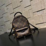 Túi xách Louis Vuitton siêu cấp VIP -TXLV307