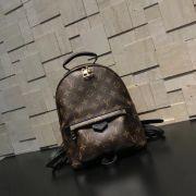 Túi xách Louis Vuitton siêu cấp VIP -TXLV308