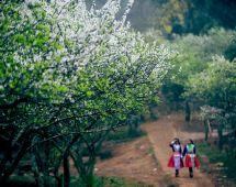 Điện Biên Phủ - Khu du lịch Hồ Pa Khoang - Đền Hoàng Công Chất - Mộc Châu