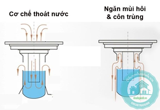 thoat-san-chong-mui-va-con-trung-zento-zt540-99x99mm3_result